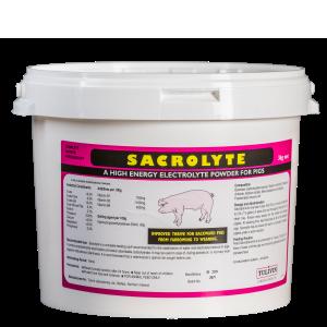 Sacrolyte Pig
