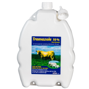 Tramazole 10% Oral Drench
