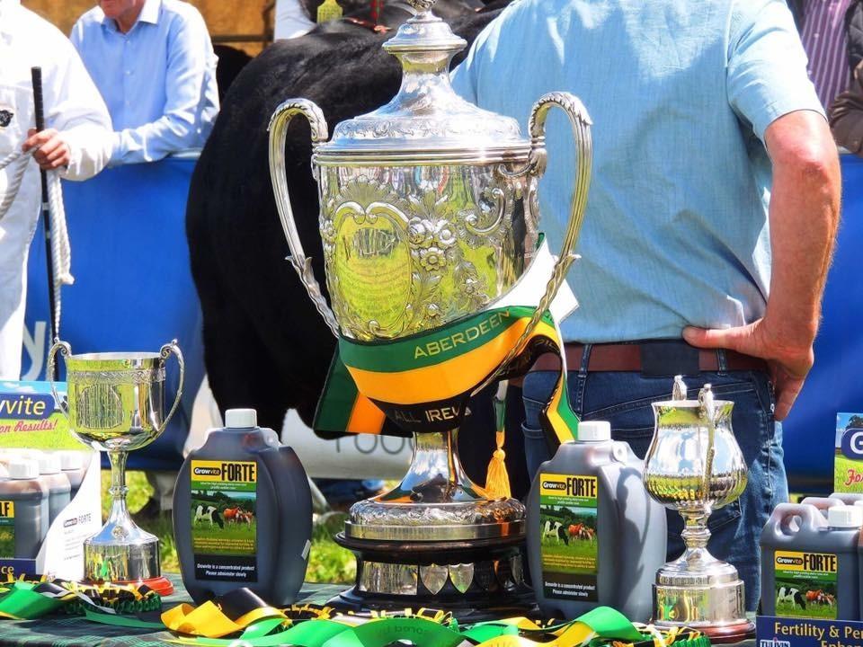 Growvite All-Ireland Aberdeen Angus Championship 2017